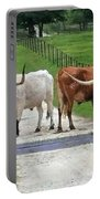 Texas Cattle Guard Portable Battery Charger