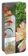 Texas Indian Paintbrush Collage Portable Battery Charger