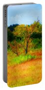 Texas Landscape 102310 Portable Battery Charger