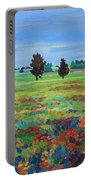 Texas Landscape Bluebonnet Indian Paintbrush Explosion Portable Battery Charger
