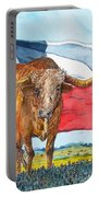 Texas  Portable Battery Charger