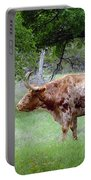 Texas Longhorn Steer Portable Battery Charger