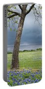 Texas Spring Storm Portable Battery Charger