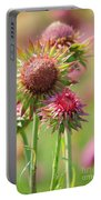 Texas Thistle 001 Portable Battery Charger