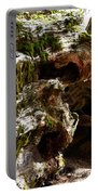 Textures On A Giant Sequoia Portable Battery Charger