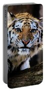That Tiger Look Portable Battery Charger
