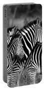 The Amazing Shot Of Zebra Portable Battery Charger