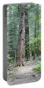 The Ancient Hemlock Forest Portable Battery Charger