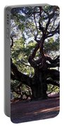 The Angel Oak In Charleston Sc Portable Battery Charger