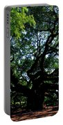 The Angel Oak In Summer Portable Battery Charger
