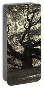 The Angel Oak Portable Battery Charger