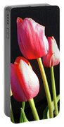 The Appearance Of Spring - Tulips Portable Battery Charger