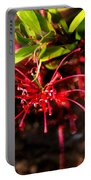 The Art Of Spider Flower Portable Battery Charger