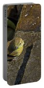 The Bath - American Goldfinch - Spinus Tristis Portable Battery Charger