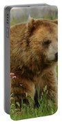 The Bear 1 Dry Brushed Portable Battery Charger