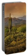 The Beauty Of The Sonoran Desert  Portable Battery Charger