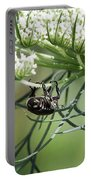 The Beetle Acrobat Portable Battery Charger
