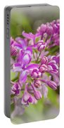 The Branch Of Lilac Portable Battery Charger