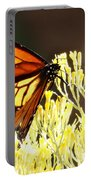 The Butterfly 2 Portable Battery Charger