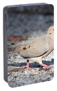The Chipper Mourning Dove Portable Battery Charger