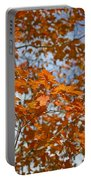 The Color Of Fall 1 Portable Battery Charger