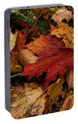 The Color Of Fall Portable Battery Charger