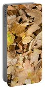 The Colors Of The Leaves In Autumn Portable Battery Charger