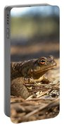 The Common Toad 4 Portable Battery Charger