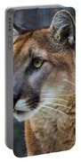 The Cougar Portable Battery Charger