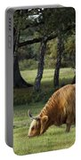 The Creature Of New Forest Portable Battery Charger