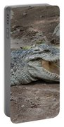 The Croc Portable Battery Charger