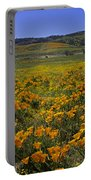 The Desert In Bloom Portable Battery Charger