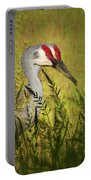 The Duo - Two Sandhill Cranes Portable Battery Charger