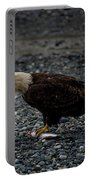 The Eagle And Its Prey Portable Battery Charger