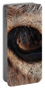 The Eye Of A Burro Portable Battery Charger