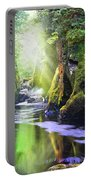 The Fairy Glen Gorge River Conwy Portable Battery Charger
