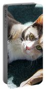 The Ferals-1407 Portable Battery Charger