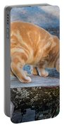 The Ferals-1451 Portable Battery Charger