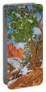 The Ferruginous Earth Of The Rocky Mountain West Portable Battery Charger