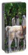 The Five Llamas Portable Battery Charger