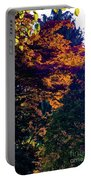 The Forest At Dusk Portable Battery Charger
