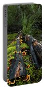 The Forest Floor Portable Battery Charger