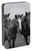 The Four Horses Portable Battery Charger