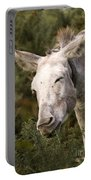 the Funny Donkey Portable Battery Charger