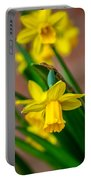 The Gentleness Of Spring Portable Battery Charger