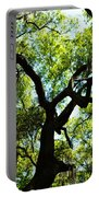 The Grace Of A Lonely Tree Portable Battery Charger