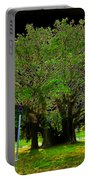 The Great Banyan Portable Battery Charger