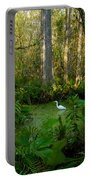 The Great Corkscrew Swamp Portable Battery Charger