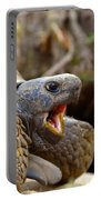The Great Gopher Tortoise Portable Battery Charger