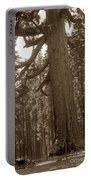The Grizzly Giant Is A Giant Sequoia In Mariposa Grove Is In Yosemite Circa 1916 Portable Battery Charger